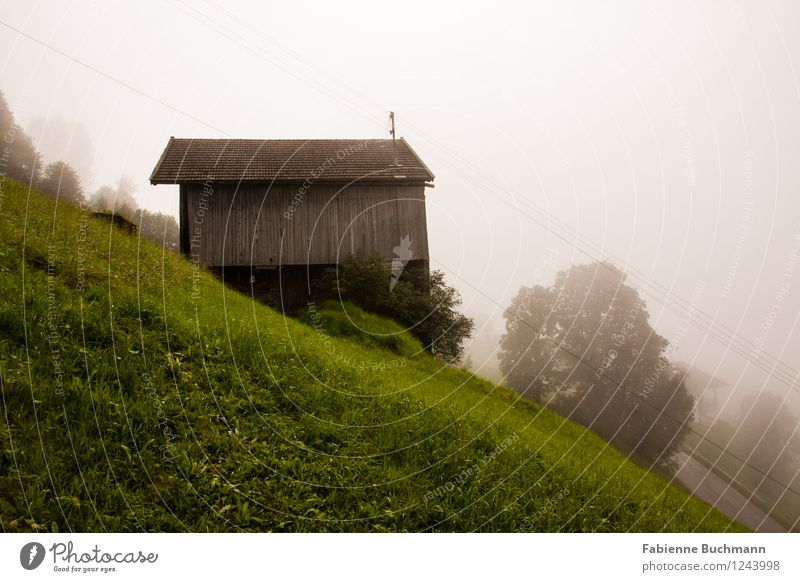 cottage without a view Himmel Natur Pflanze Baum Landschaft Wolken Haus Berge u. Gebirge Herbst Wiese Gras Holz Feld Nebel Sträucher Schutz