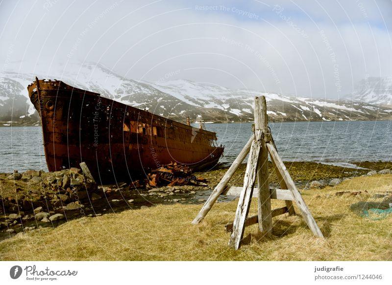 Island Umwelt Natur Landschaft Klima Wetter Eis Frost Berge u. Gebirge Gipfel Schneebedeckte Gipfel Fjord Westfjord Schifffahrt Fischerboot alt kalt kaputt