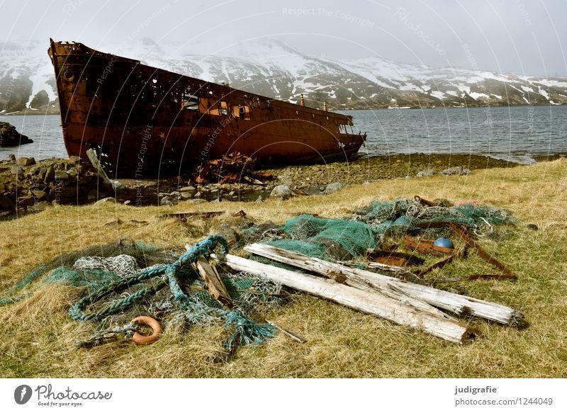 Island Umwelt Natur Landschaft Klima Küste Fjord Meer Djupavik Dorf Schifffahrt Schiffswrack alt außergewöhnlich kalt maritim wild Stimmung Einsamkeit