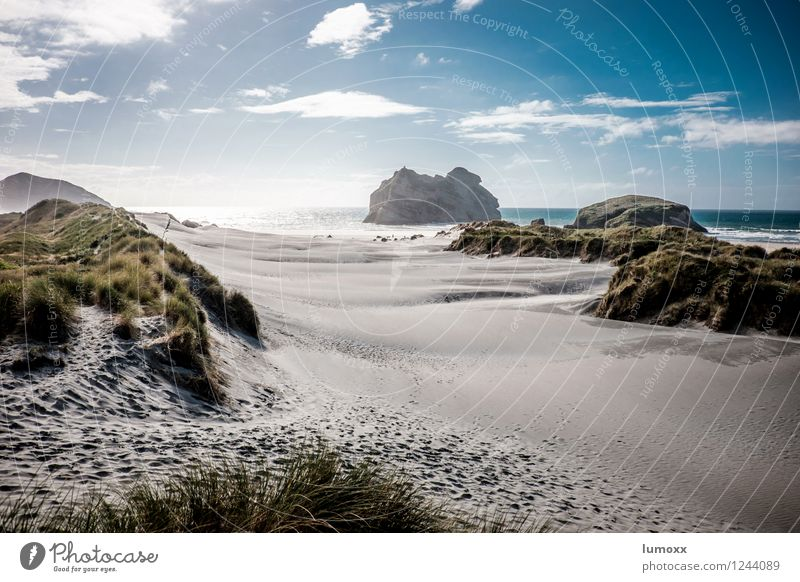 wharariki beach Natur Ferien & Urlaub & Reisen Wasser Meer Landschaft Strand Küste Sand Felsen Insel Düne Neuseeland Dünengras Südinsel