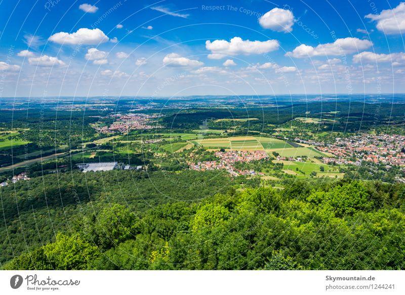 Ausblick mit Wolken Umwelt Natur Landschaft Pflanze Tier Himmel Sonne Sonnenlicht Frühling Sommer Klima Klimawandel Wetter Schönes Wetter Baum Blume Gras