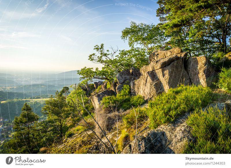 Lautenfelsen Umwelt Natur Landschaft Pflanze Tier Sonne Sonnenaufgang Sonnenuntergang Sonnenlicht Frühling Sommer Klima Klimawandel Wetter Schönes Wetter Wärme