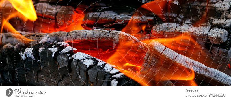 I See Fire Sommer Wasser Winter Wärme Holz Garten Feste & Feiern Park Energiewirtschaft gefährlich Feuer heiß Camping Fleisch Abgas brennen