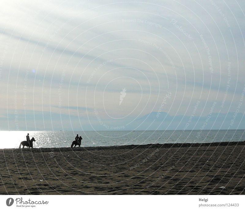 Ausritt am Strand II Mensch Himmel Wasser Ferien & Urlaub & Reisen Hand Sonne Meer Freude Einsamkeit Wolken ruhig Erholung Ferne Berge u. Gebirge Freiheit