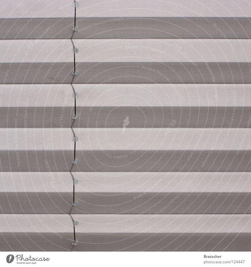 Wissenshorizont grau Hintergrundbild geschlossen Streifen einfach Vorhang Fensterscheibe gestreift Textfreiraum Symmetrie Geometrie graphisch Fensterladen