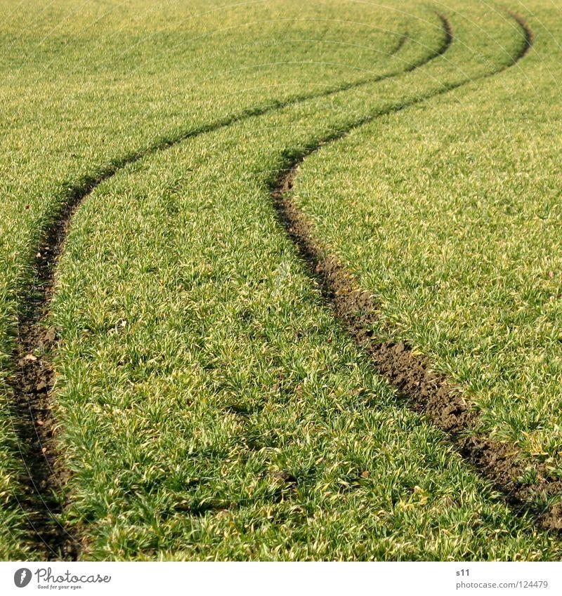 Alles Betrunken Oder Was ??? Feld grün Spuren quer Traktorspur Alkoholisiert krumm Wellen wellig Gras Wiese Wege & Pfade verrückt Kurve uneben Außenaufnahme