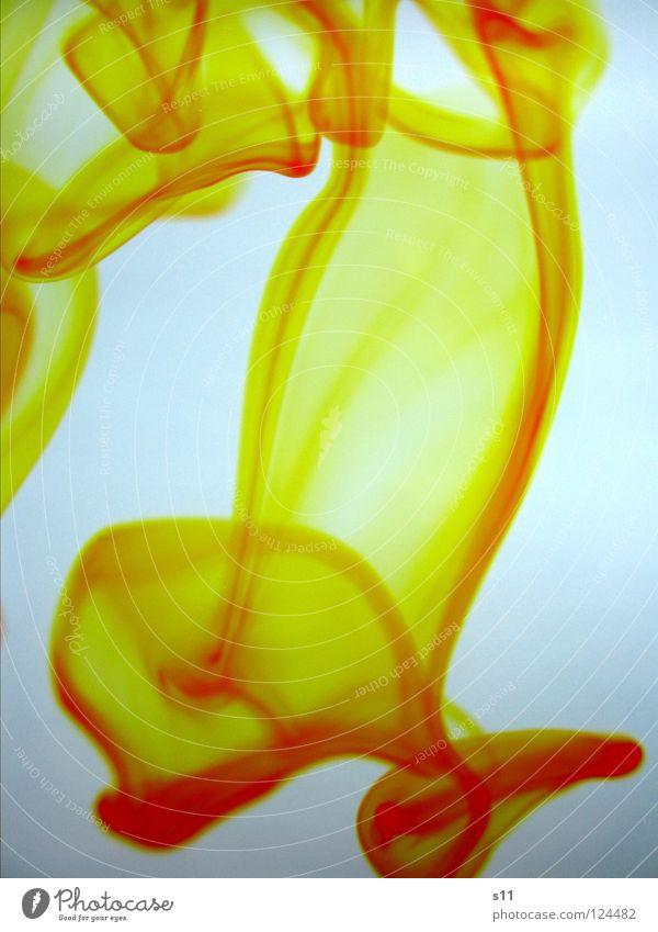 Yellow In Water Wasser Flüssigkeit nass weiß Farbe Vergänglichkeit fließen mischen Lebensmittelfarbe Spuren yellow. gelb water mehrfarbig Licht