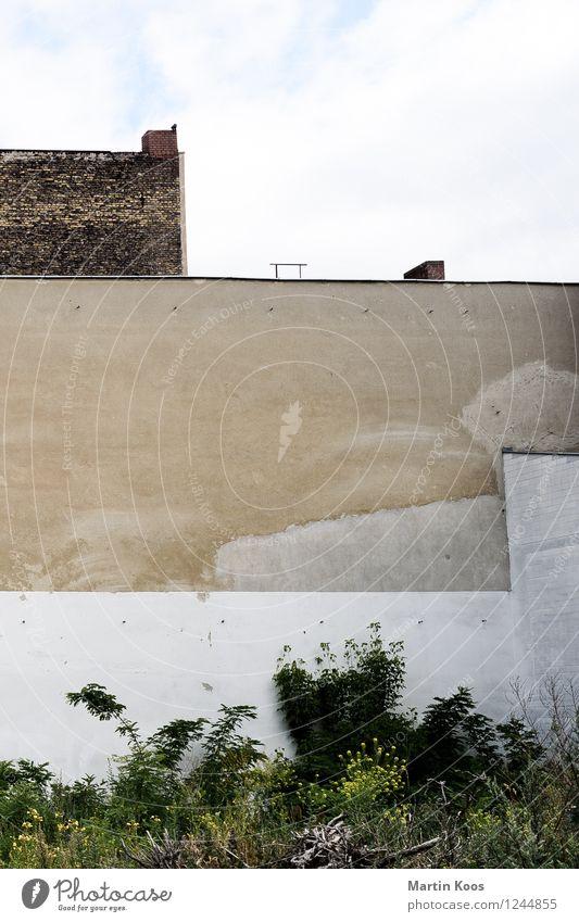 Stadtaussicht Sträucher Haus Gebäude Mauer Wand Fassade alt trist braun weiß Umzug (Wohnungswechsel) Häusliches Leben Zukunft Miete Schornstein Altbau Farbfoto