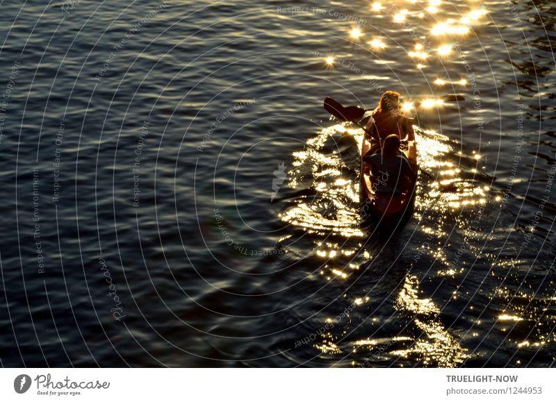 In die Abendsonne paddeln Mensch Natur Ferien & Urlaub & Reisen Jugendliche blau Sommer Junge Frau Sonne Landschaft Junger Mann Freude 18-30 Jahre Erwachsene