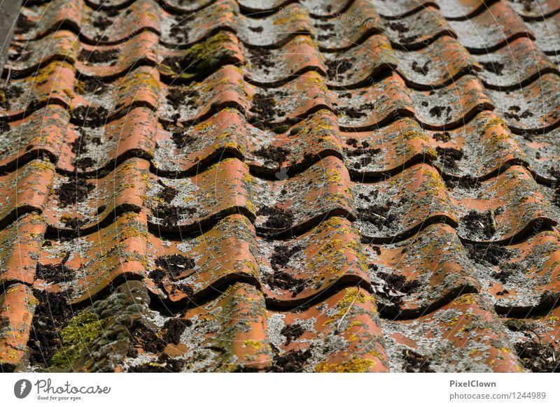 Dachziegel mit Gebrauchsspuren Stadt alt Haus Architektur Gebäude Stein braun liegen orange Häusliches Leben Dach Bauwerk Renovieren Handwerker Dachboden