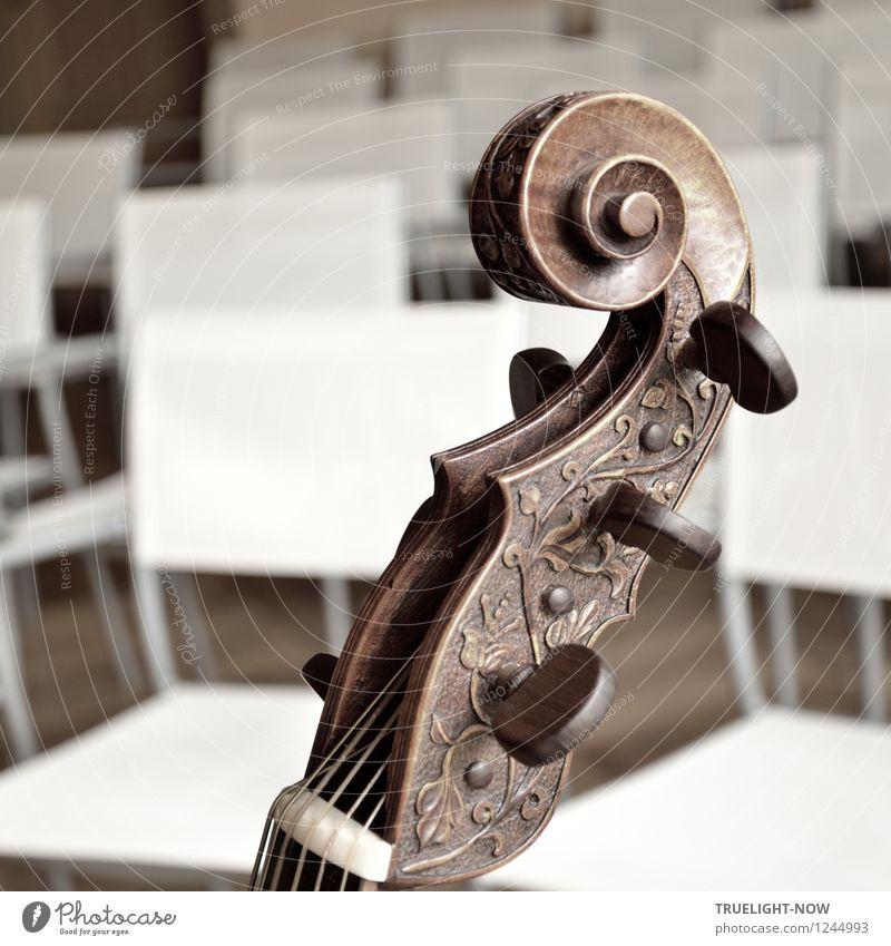 Gambe/Viola da Gamba Lifestyle elegant Freude Glück harmonisch Wohlgefühl Sinnesorgane Erholung ruhig musizieren Kunst Vortragssaal Musik Musik hören Konzert