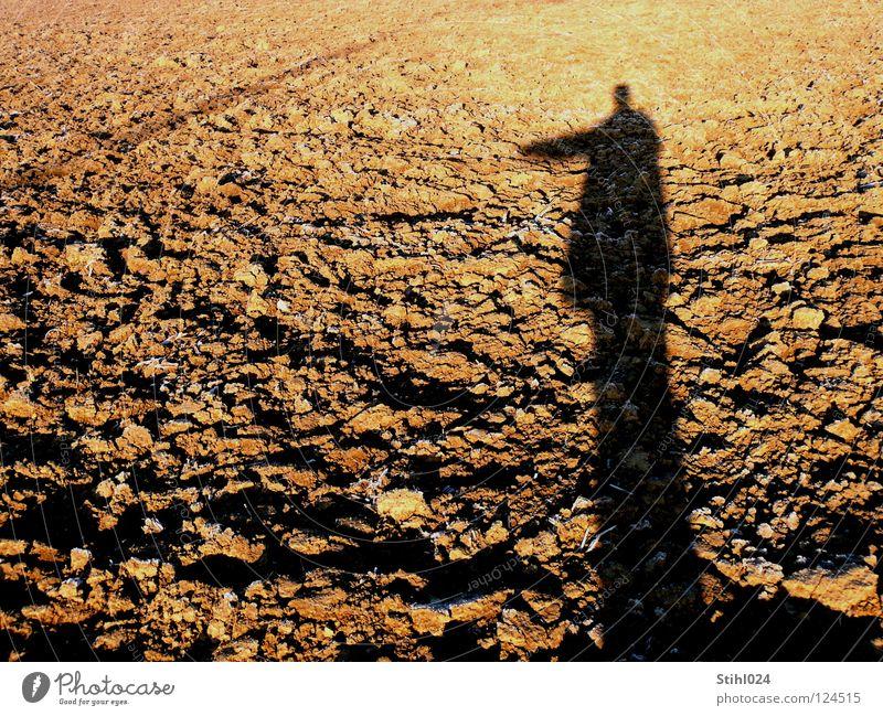 Mach dich vom Acker! Feld gepflügt Landwirtschaft Licht Raureif Sonnenuntergang Gegenlicht Romantik ausgestreckt Hand Silhouette Quaste Fotograf Selbstportrait
