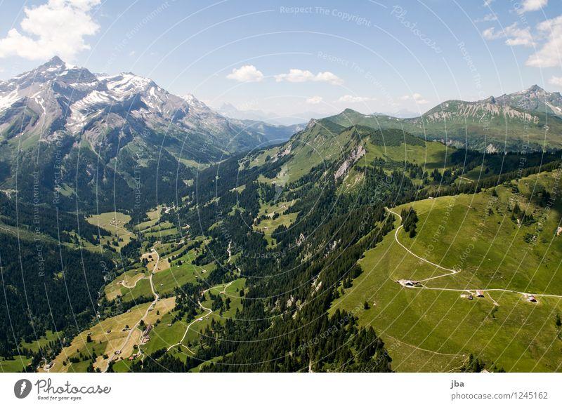 Col du Pillon Himmel Natur Sommer Erholung ruhig Wolken Ferne Berge u. Gebirge Wärme Sport Freiheit fliegen Zufriedenheit Freizeit & Hobby Luft Luftverkehr