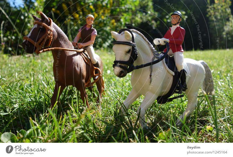 Reiter Freizeit & Hobby Spielen Reiten Reitsport Personenverkehr Tier Pferd 2 Spielzeug Kunststoff Zusammensein braun grün weiß Freundschaft Kindheit