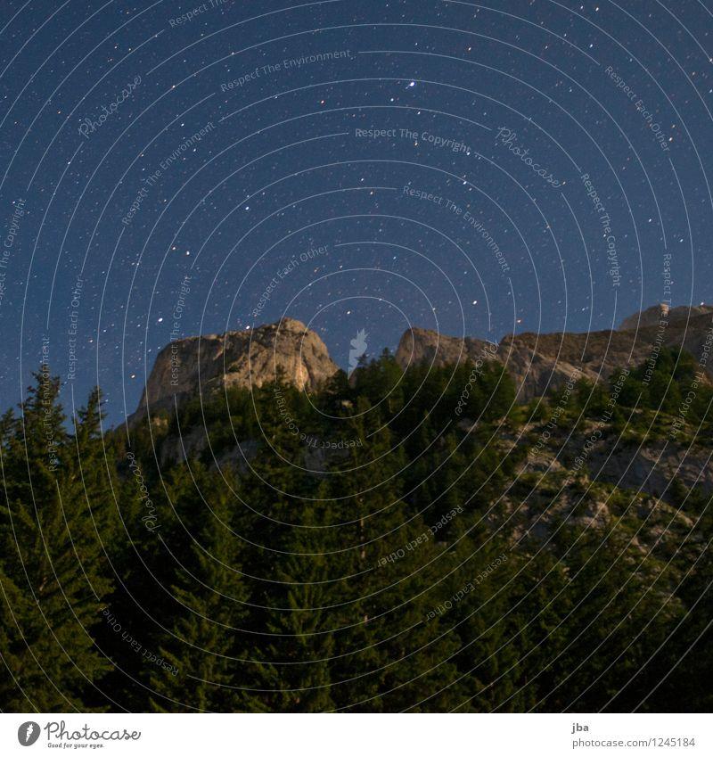 Nachthimmel über Gsteig ruhig Umwelt Natur Urelemente Himmel Stern Sommer Schönes Wetter Baum Tanne Wald Felsen Alpen Gipfel Saanenland Zeit Felswand Berghang
