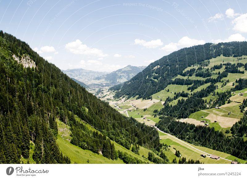 final glide Natur Sommer Erholung Landschaft ruhig Ferne Wald Berge u. Gebirge Sport fliegen Lifestyle Zufriedenheit Freizeit & Hobby Luft Luftverkehr