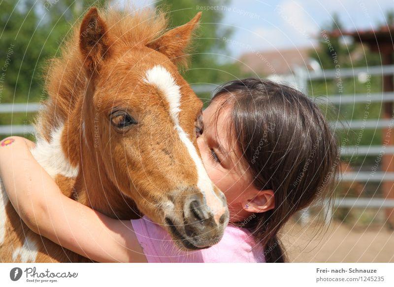 Herzlich Wilkommen.... in meinen Herzen! weiß Tier Tierjunges Leben Liebe Gefühle natürlich Glück braun Stimmung Zusammensein rosa träumen Zufriedenheit leuchten authentisch
