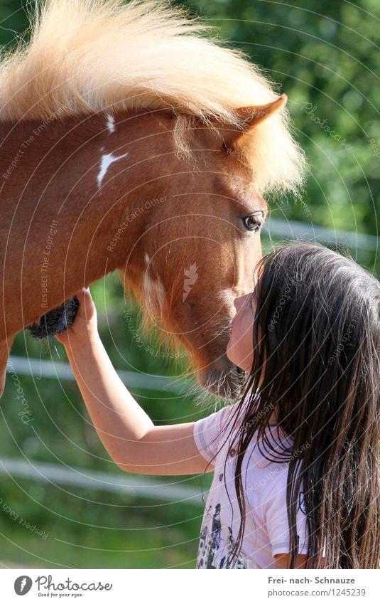 Deine Augen zeigen mir das Spiegelbild meiner Taten! Mensch Kind Natur Sommer Erholung ruhig Tier Mädchen Gefühle feminin Zusammensein Freundschaft