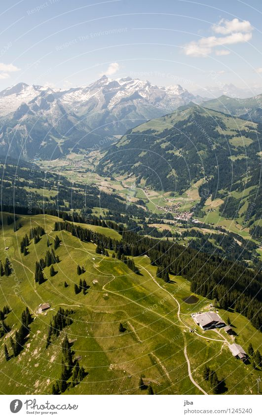 Saanenland von oben Natur Erholung Landschaft ruhig Ferne Wald Berge u. Gebirge Sport fliegen Zufriedenheit Freizeit & Hobby Luft Luftverkehr hoch Ausflug Lebensfreude