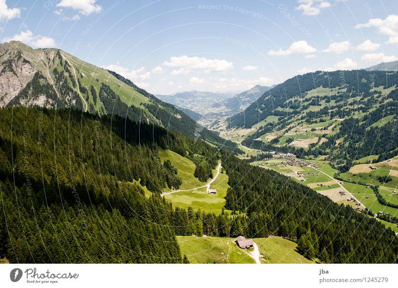 Feutersoey Himmel Natur Sommer Baum Erholung Landschaft ruhig Ferne Wald Berge u. Gebirge Sport Freiheit fliegen Lifestyle Zufriedenheit Freizeit & Hobby