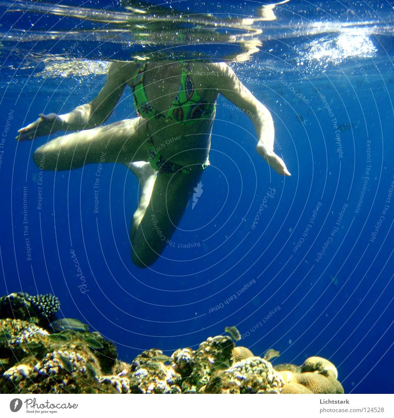 kopf unter - voyeur Voyeurismus Meer Meerwasser Wellen Licht tauchen Bikini Ferien & Urlaub & Reisen Sonnenbad Freizeit & Hobby Hautfarbe Hülle Liebesleben