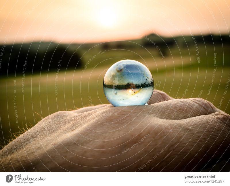 Und wenn es unsere Welt wäre... Umwelt Natur Landschaft Tier Himmel Wolkenloser Himmel Horizont Sonne Sonnenaufgang Sonnenuntergang Sonnenlicht Sommer Wetter