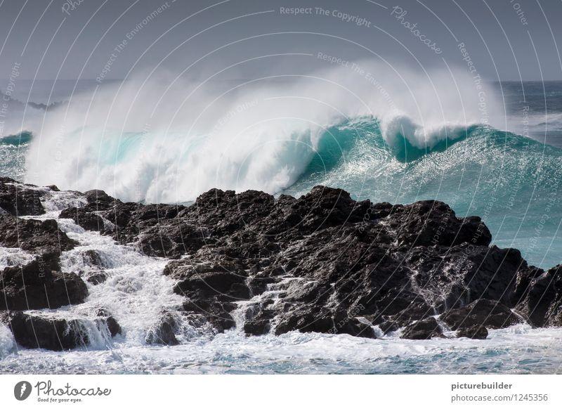 Brandungswelle Ferien & Urlaub & Reisen Tourismus Ferne Sommer Meer Wellen Natur Urelemente Wolkenloser Himmel Schönes Wetter Küste ästhetisch maritim blau