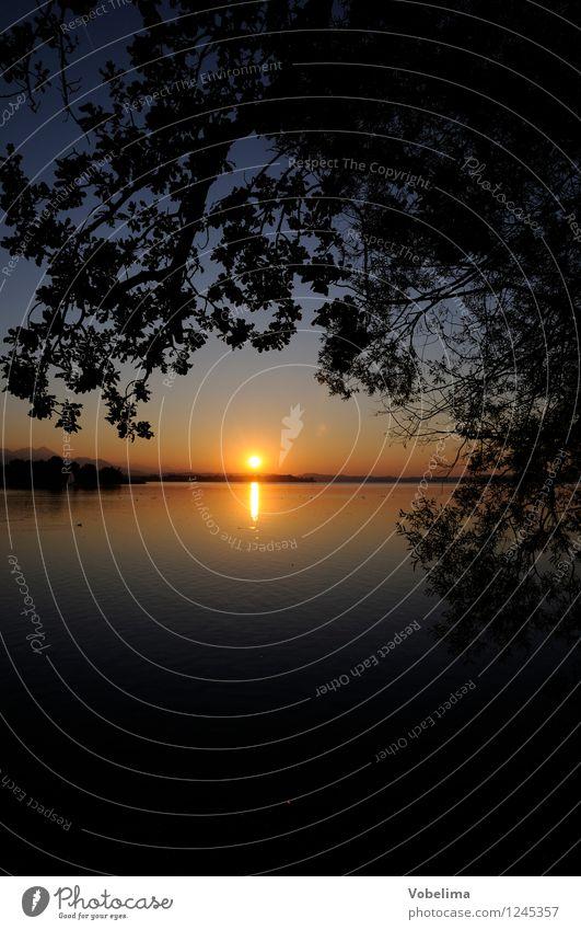 Abend am Chiemsee Sonne Natur Landschaft Wasser Sonnenaufgang Sonnenuntergang Sonnenlicht Baum Blatt Seeufer blau braun gelb grau orange schwarz Romantik Zweig