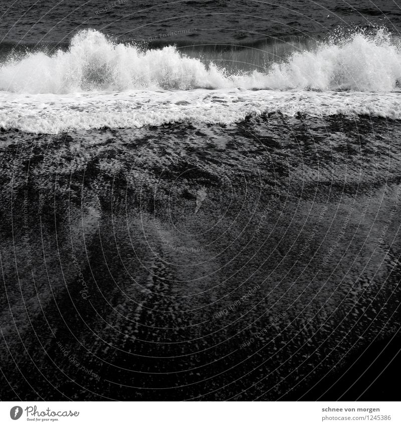 im fluss Umwelt Natur Landschaft Erde Sand Wasser Wetter schlechtes Wetter Unwetter Wind Sturm Regen Wellen Küste Seeufer Strand Bucht Meer Insel Island Vik