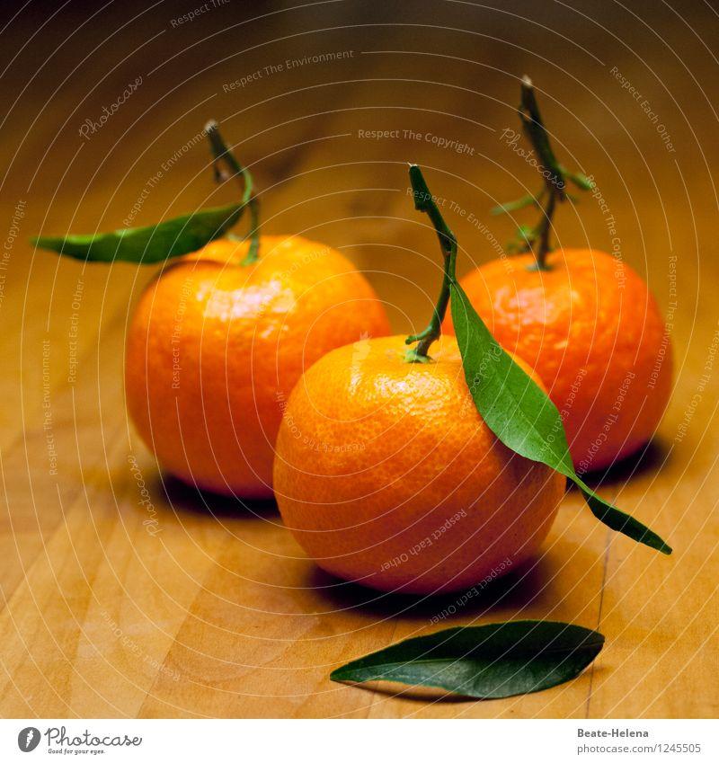 Immunstimulanz Natur Gesunde Ernährung Essen Gesundheit Lebensmittel Frucht orange frisch Orange ästhetisch genießen süß Erkältung Medikament Bioprodukte Ernte