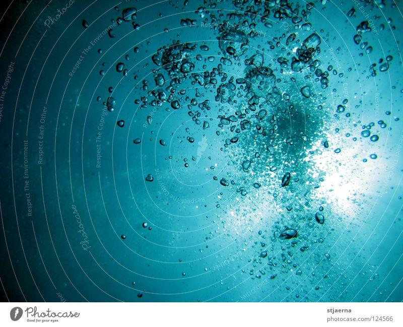 BUBBLES Wasser Meer Unterwasseraufnahme tauchen atmen Wasseroberfläche Wasserblase
