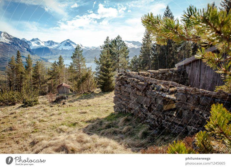 Ausblick von oben Klettern Bergsteigen wandern Umwelt Natur Wolken Horizont Schönes Wetter Baum Gras Alpen Berge u. Gebirge Schneebedeckte Gipfel Menschenleer