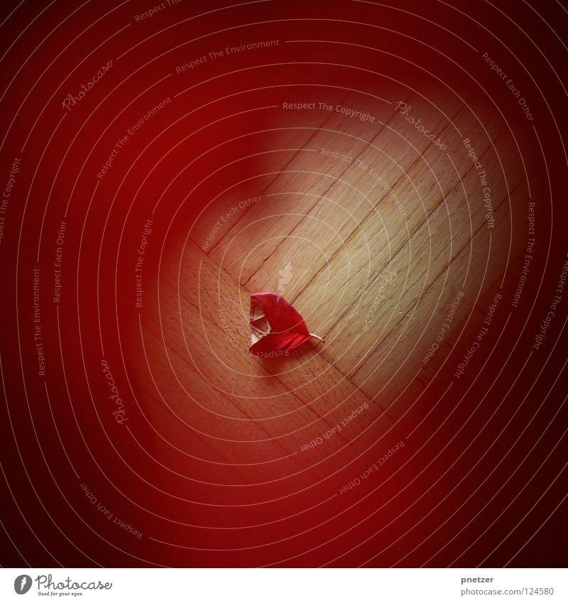 Loch Blüte Blatt Pflanze rot Parkett Unschärfe Holz braun Vergänglichkeit Trauer Verzweiflung getrocknet alt welk