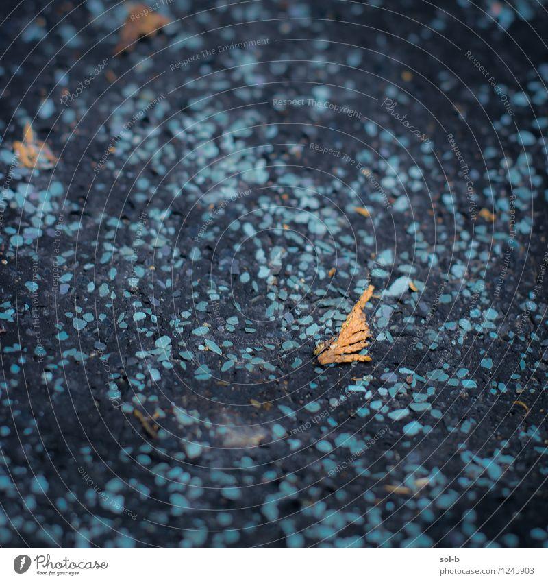 cldbcmt Häusliches Leben Hausbau Renovieren Natur Blatt Garten Dach Kunststoff alt dunkel schwarz türkis Abdeckung Material Baracke einfach gepunktet Herbstlaub