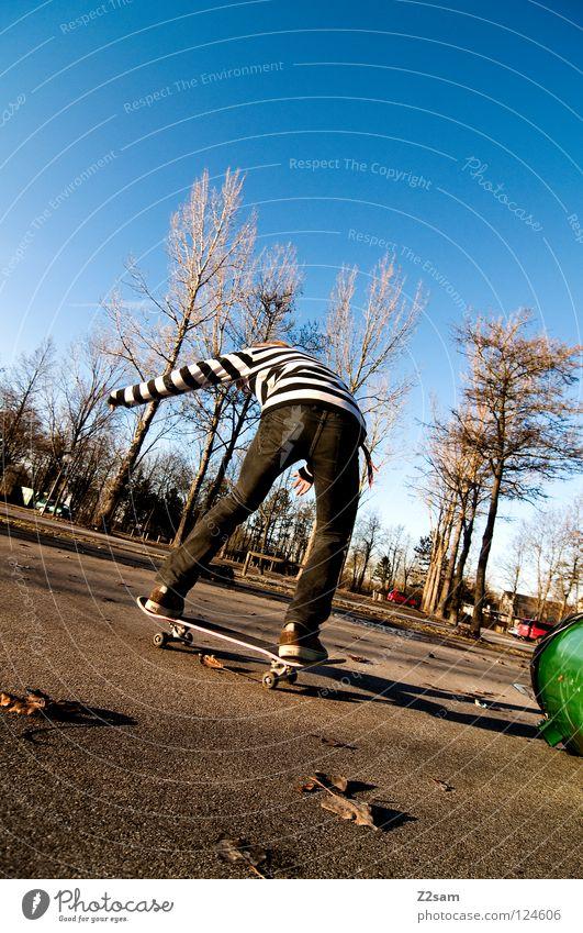 landing Mensch Himmel Baum grün blau Sommer Blatt Zufriedenheit Rücken Jeanshose fahren Skateboarding Flugzeuglandung Teer Fass
