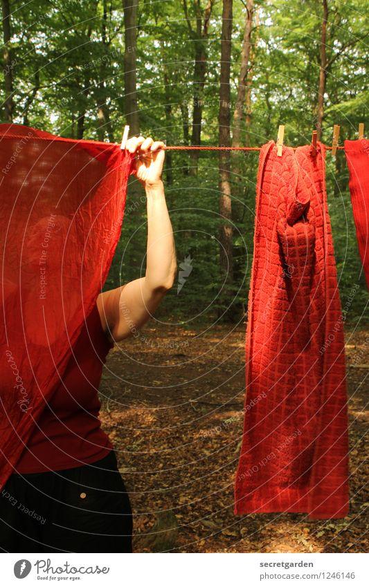 pz3: durchblicke oder: rot sehen Häusliches Leben feminin Frau Erwachsene 1 Mensch 45-60 Jahre Natur Sommer Baum Wald Arbeit & Erwerbstätigkeit hängen dunkel