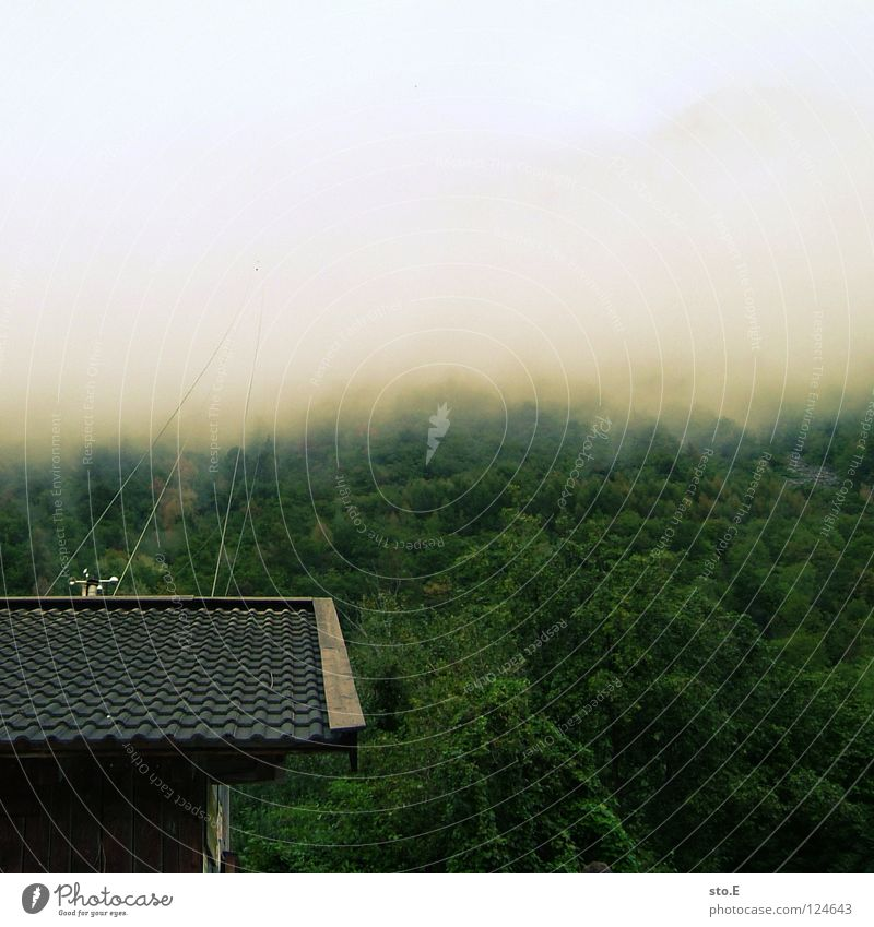 himmelfahrt Seilbahn Wolken schlechtes Wetter Nebel Haus Station Backstein Dach Wald Gipfel Baum grün ungewiss unheimlich Himmel Berge u. Gebirge hoch oben