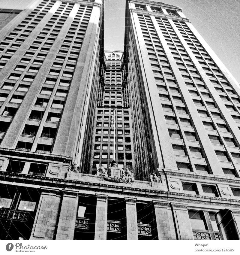Genickstarre New York City Hochhaus USA Schwarzweißfoto Stadt
