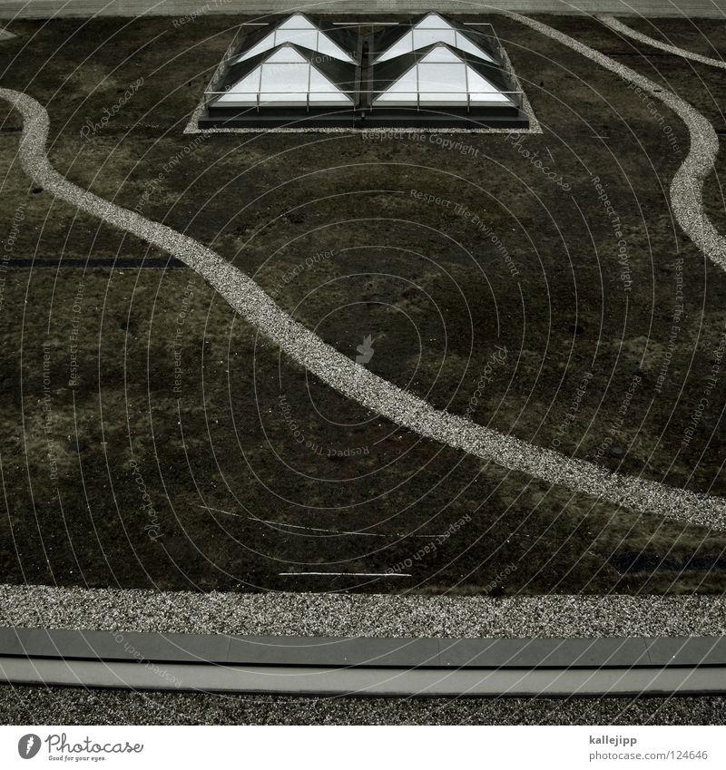 ägypten? Natur grün Wiese Garten Wege & Pfade Park Landschaft Kunst Architektur Design Ordnung Zukunft Fluss Ziel Häusliches Leben