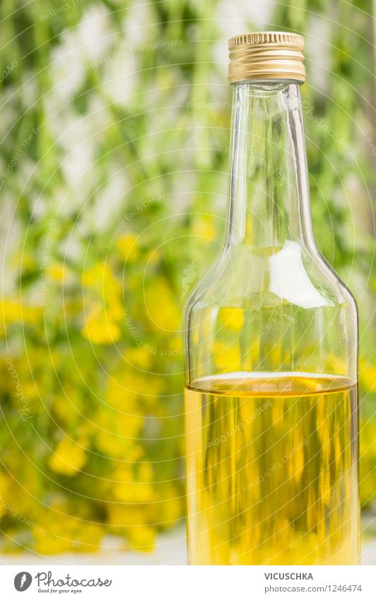 Rapsöl Pflanze Blatt Gesunde Ernährung gelb Wand Leben Blüte Stil Foodfotografie Lebensmittel Stadt Essen Design Glas Kochen & Garen & Backen Bioprodukte