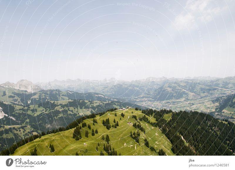 Thermik über der Wispile Lifestyle Wohlgefühl Zufriedenheit Erholung ruhig Freizeit & Hobby Ausflug Freiheit Sommer Berge u. Gebirge Sport Gleitschirm