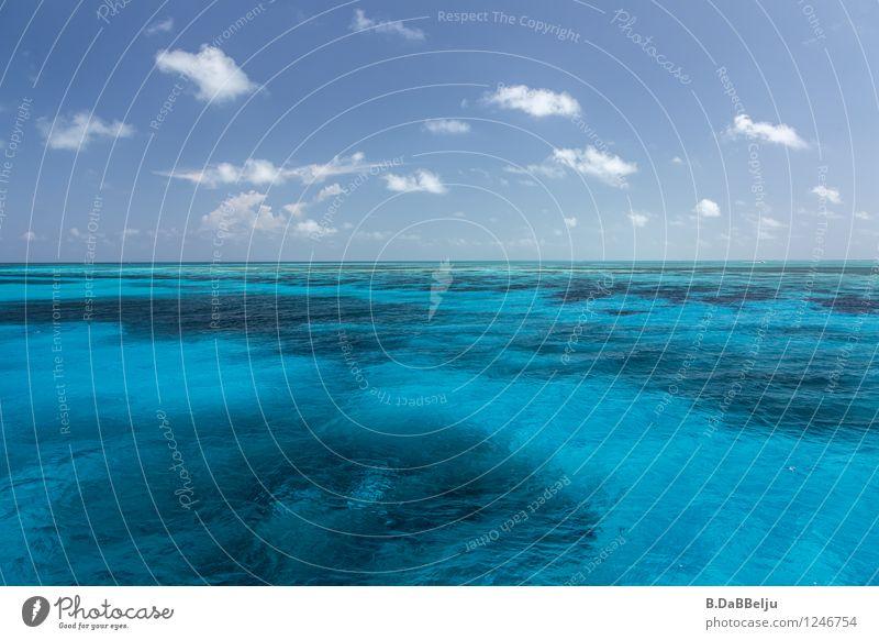 blau Ferien & Urlaub & Reisen Meer Wellen Natur Wasser Himmel Wolken Erholung Schwimmen & Baden tauchen Karibik Karibisches Meer Riff Belize Wassersport