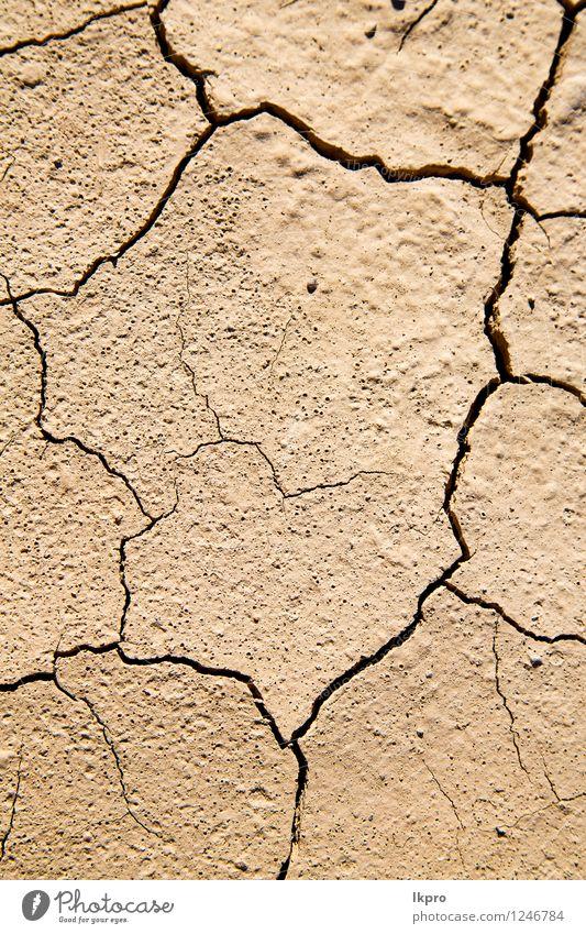 brauner trockener Sand in der Sahara Natur Ferien & Urlaub & Reisen Sommer Landschaft Umwelt natürlich Design wild Wetter dreckig Klima Boden heiß Düne Afrika
