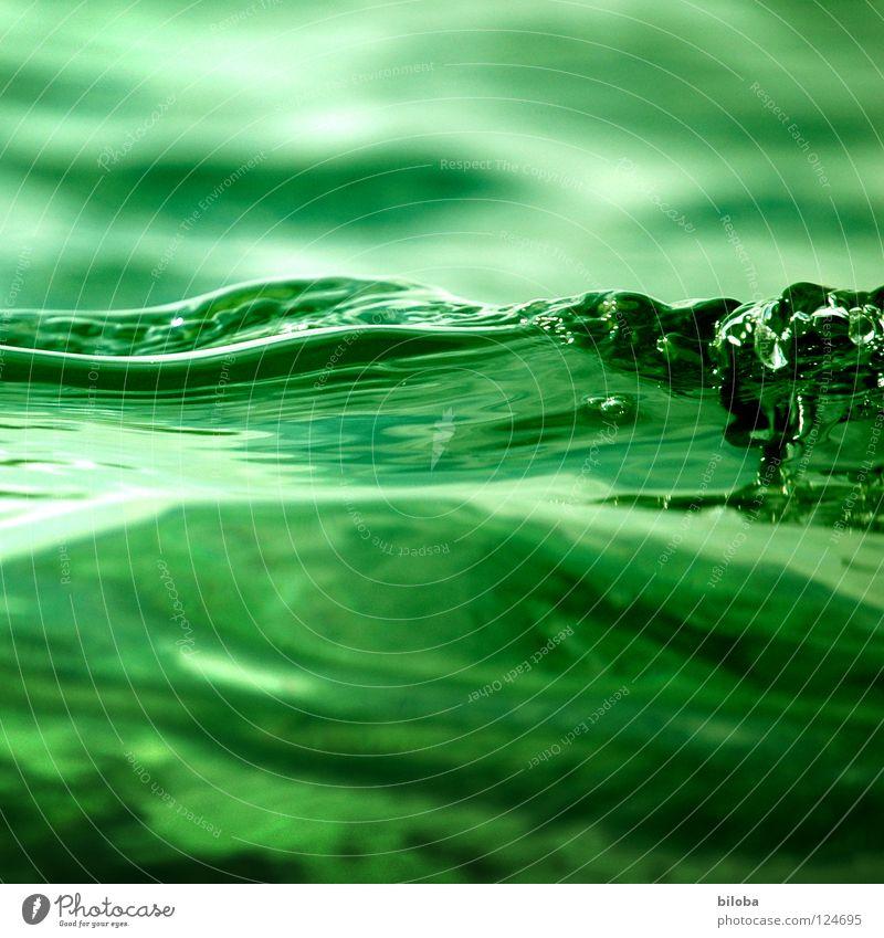 Nahe am Wasser Wellen grün See liquide Flüssigkeit weich zart ruhig beruhigend Nebel grau dunkel bedrohlich leer Luft ursprünglich tief kalt Einsamkeit Ödland