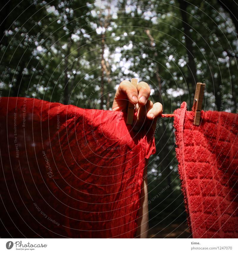 PZ3   Red Stuff Day Preparation Mensch Natur grün rot Hand Wald Leben Idylle Kreativität Finger Schönes Wetter Zusammenhalt Stoff Stress hängen Irritation