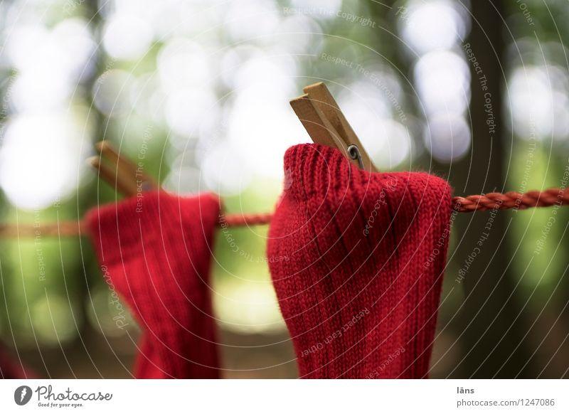 pZ3 l geklammert Wald Strümpfe trocknen Wäsche Wäscheleine aufhängen Wäscheklammern