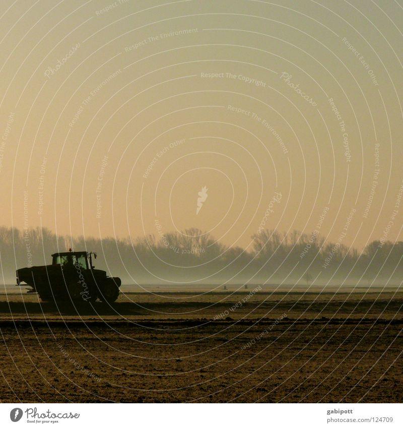 Frühaufsteher Traktor Landwirtschaft Feldarbeit Flur Wiese Wald Nebel Morgen Sonnenaufgang Düngung Unkrautbekämpfung Stickstoff Aussaat Saatgut ökologisch