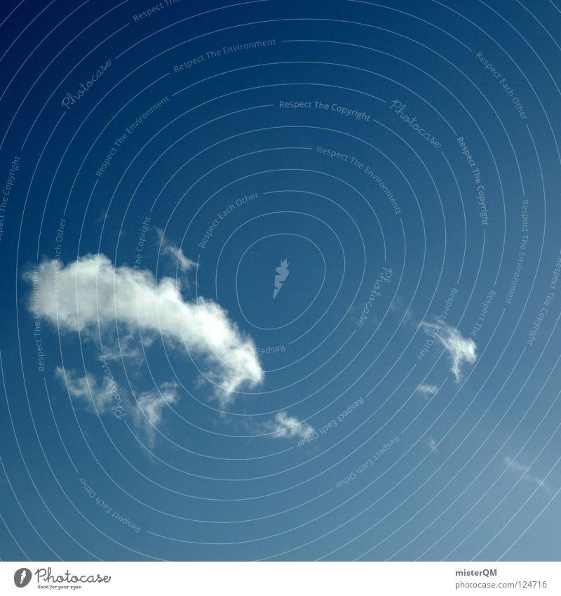 cant over smile. Wolken weiß schön Physik Himmel Ferien & Urlaub & Reisen Cirrus Mittag Nachmittag himmlisch bezaubernd Zukunft Horizont Einsamkeit Verlauf