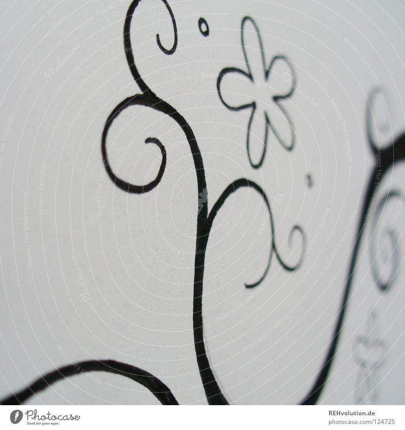 Inspiratingel schwarz weiß Entwurf Gemälde Kreis geschwungen Wachstum Ranke filigran fein schwungvoll nah Schreibstift Papier Block Blume Blüte Schnörkel