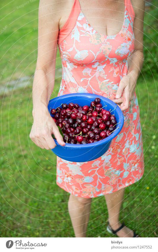 Fruits of Temptation Mensch Frau blau grün schön Sommer rot Erotik Gesunde Ernährung Erwachsene Wiese feminin Stil Frucht frisch Körper